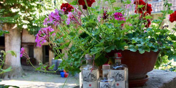Schnaps-vor-Blumen